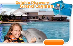 location-ovw-cayman.jpg